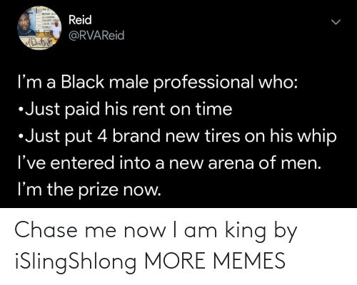 Chase: Chase me now I am king by iSlingShlong MORE MEMES