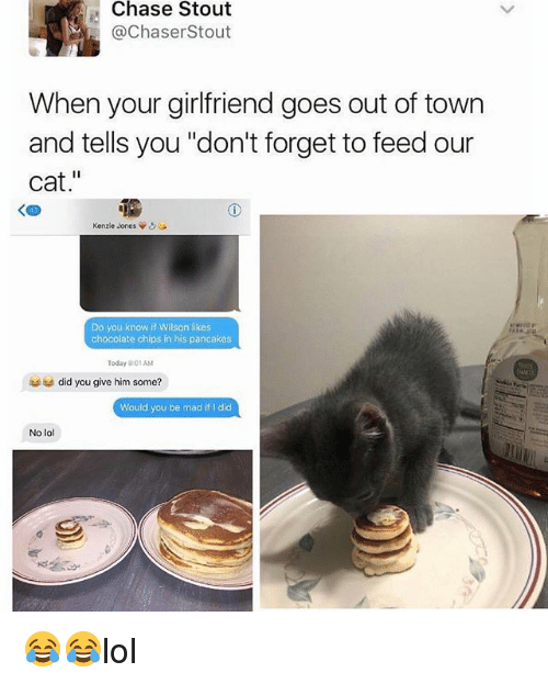 "Lol, Memes, and Chase: Chase Stout  @ChaserStout  When your girlfriend goes out of town  and tells you ""don't forget to feed our  cat.""  く四  Kenzie Jones ψ  Do you know if Wilson likes  chocolate chips in his pancakes  Today 9:01AM  did you give him some?  Would you be mad if I did  No lol  ,鄉 😂😂lol"