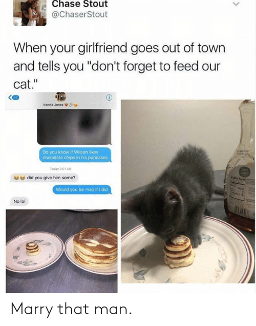 "out of town: Chase Stout  @ChaserStout  When your girlfriend goes out of town  and tells you ""don't forget to feed our  cat.""  Kenzie Jones òea  Do you know if Wilson likes  chocolate chips in his pancakes  Today 001 AM  did you give him some?  Would you be mad if I did  No lol Marry that man."