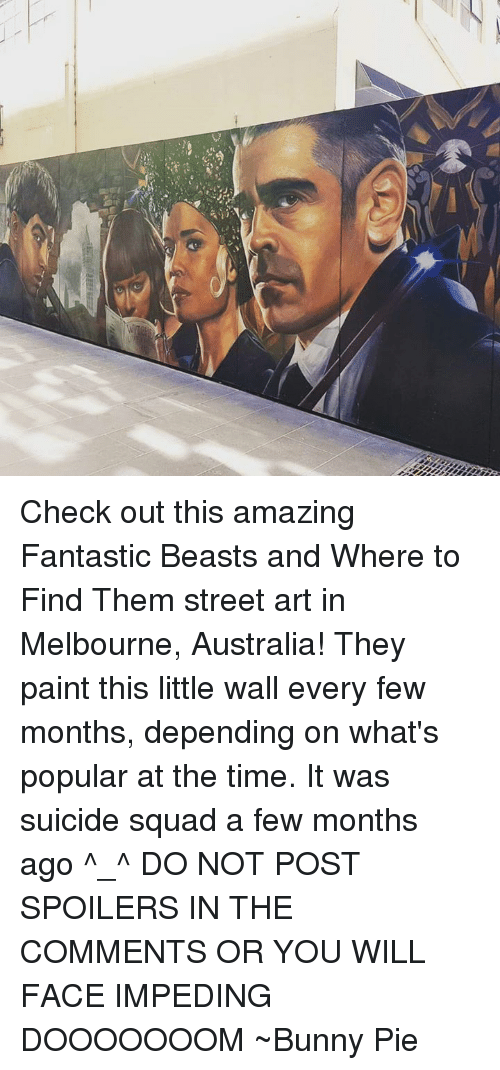 Bunni: Check out this amazing Fantastic Beasts and Where to Find Them street art in Melbourne, Australia!  They paint this little wall every few months, depending on what's popular at the time.  It was suicide squad a few months ago ^_^ DO NOT POST SPOILERS IN THE COMMENTS OR YOU WILL FACE IMPEDING DOOOOOOOM ~Bunny Pie