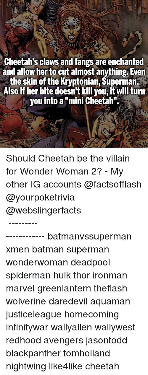 """hulking: Cheetah's claws and fangs are enchanted  and allow her to cut almost anything. Even  the skin of the Kryptonian, Superman.  Also if her bite doesn't kill you, it will turn  you into a """"mini Cheetah"""" Should Cheetah be the villain for Wonder Woman 2? - My other IG accounts @factsofflash @yourpoketrivia @webslingerfacts ⠀⠀⠀⠀⠀⠀⠀⠀⠀⠀⠀⠀⠀⠀⠀⠀⠀⠀⠀⠀⠀⠀⠀⠀⠀⠀⠀⠀⠀⠀⠀⠀⠀⠀⠀⠀ ⠀⠀--------------------- batmanvssuperman xmen batman superman wonderwoman deadpool spiderman hulk thor ironman marvel greenlantern theflash wolverine daredevil aquaman justiceleague homecoming infinitywar wallyallen wallywest redhood avengers jasontodd blackpanther tomholland nightwing like4like cheetah"""