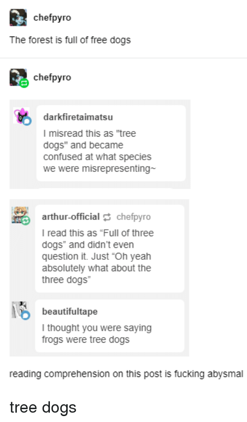 """Arthur, Confused, and Dogs: chefpyro  The forest is full of free dogs  chefpyro  darkfiretaimatsu  I misread this as """"tree  dogs"""" and became  confused at what species  we were misrepresenting-  arthur-official chefpyro  I read this as """"Full of three  dogs"""" and didn't even  question it. Just """"Oh yeah  absolutely what about the  three dogs""""  beautifultape  thought you were saying  frogs were tree dogs  reading comprehension on this post is fucking abysmal tree dogs"""