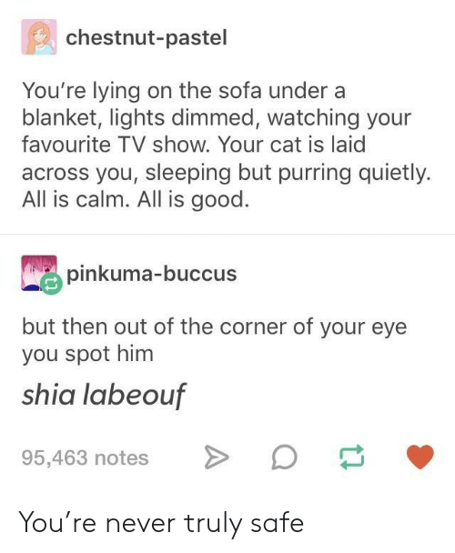 Shia LaBeouf, Good, and Sleeping: chestnut-pastel  You're lying on the sofa under a  blanket, lights dimmed, watching your  favourite TV show. Your cat is laid  across you, sleeping but purring quietly.  All is calm. All is good.  pinkuma-buccus  but then out of the corner of your eye  you spot him  shia labeouf  95,463 notesD You're never truly safe