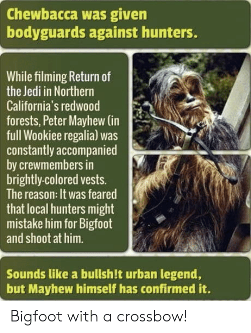 crossbow: Chewbacca was given  bodyguards against hunters.  While filming Return of  the Jedi in Northern  California's redwood  forests, Peter Mayhew (in  full Wookiee regalia) was  constantly accompanied  by crewmembers in  brightly-colored vests.  The reason: It was feared  that local hunters might  mistake him for Bigfoot  and shoot at him.  Sounds like a bullsh!t urban legend,  but Mayhew himself has confirmed it. Bigfoot with a crossbow!