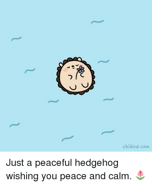 Hedgehoging: chibird.com Just a peaceful hedgehog wishing you peace and calm. 🌷