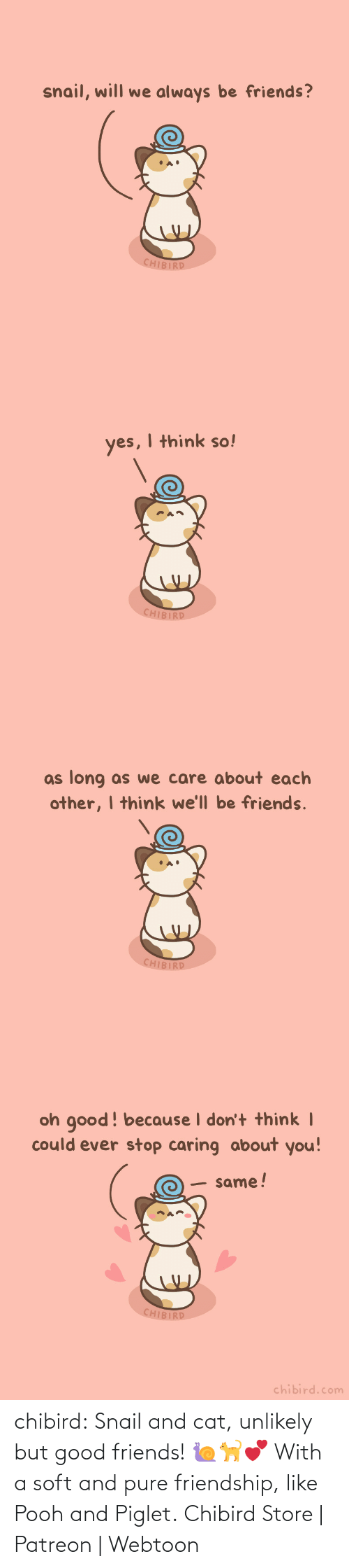 pooh: chibird:  Snail and cat, unlikely but good friends! 🐌🐈💕 With a soft and pure friendship, like Pooh and Piglet.  Chibird Store | Patreon | Webtoon