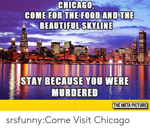 skyline: CHICAGO  COME FOR THE  BEAUTIFUL SKYLINE  STAY BECAUSE YOU WERE  MURDERED  THE META PICTURE srsfunny:Come Visit Chicago
