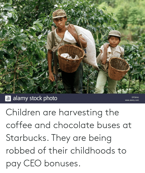 Harvesting: Children are harvesting the coffee and chocolate buses at Starbucks. They are being robbed of their childhoods to pay CEO bonuses.
