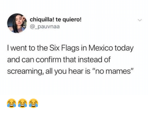 """Can Confirm: chiquilla! te quiero!  @_pauvnaa  I went to the Six Flags in Mexico today  and can confirm that instead of  screaming, all you hear is """"no mames"""" 😂😂😂"""