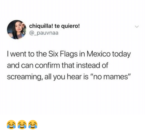 """Six Flags: chiquilla! te quiero!  @_pauvnaa  l went to the Six Flags in Mexico today  and can confirm that instead of  screaming, all you hear is """"no mames"""" 😂😂😂"""