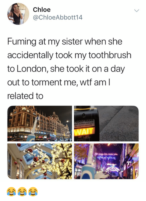 Memes, Wtf, and London: Chloe  @ChloeAbbott14  Fuming at my sister when she  accidentally took my toothbrush  to London, she took it on a day  out to torment me, wtf am  related to  EDESTRIANS  for signal opposite  WAI 😂😂😂
