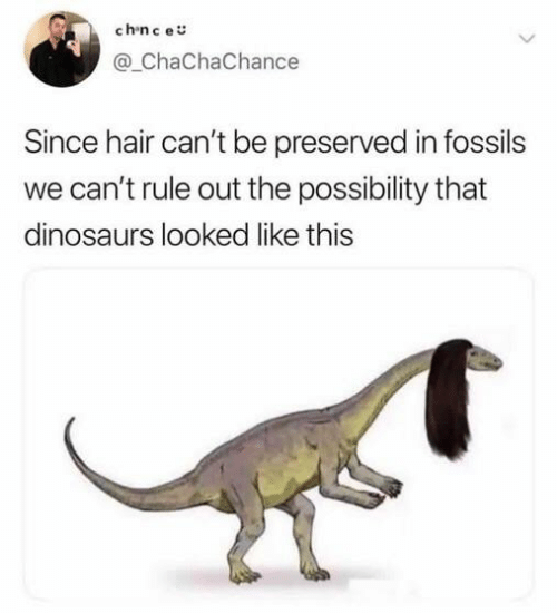 Dank, Dinosaurs, and Hair: chncet  @_ChaChaChance  Since hair can't be preserved in fossils  we can't rule out the possibility that  dinosaurs looked like this