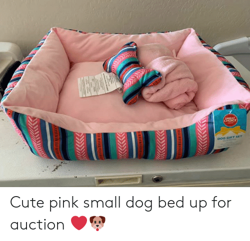 Cute, Memes, and Pink: CHOICE  DOG GIFT SET Cute pink small dog bed up for auction ❤️🐶
