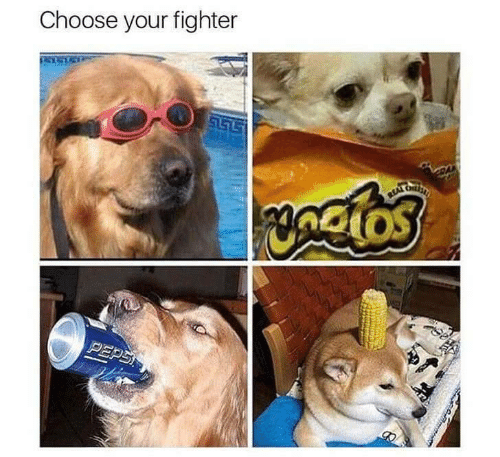 Choose Your: Choose your fighter