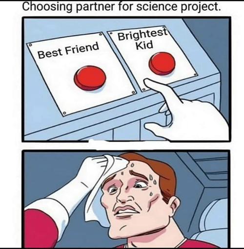 Best Friend, Best, and Science: Choosing partner for science prOject  Brightest  Kid  Best Friend