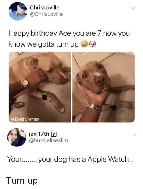 Apple, Apple Watch, and Birthday: ChrisLoville  @ChrisLoville  Happy birthday Ace you are 7 now you  know we gotta turn up  @BestMemes  jan 17th ?  @hurdlelikeslim  Your.your dog has a Apple Watch Turn up
