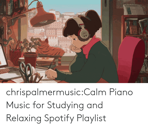 relaxing: chrispalmermusic:Calm Piano Music for Studying and RelaxingSpotify Playlist