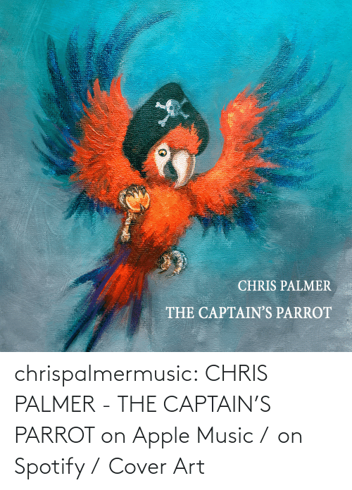 Pirate: chrispalmermusic:  CHRIS PALMER - THE CAPTAIN'S PARROT on Apple Music /  on Spotify /  Cover Art
