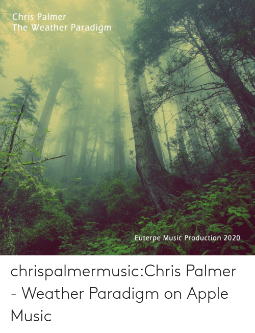 Apple: chrispalmermusic:Chris Palmer - Weather Paradigm on Apple Music