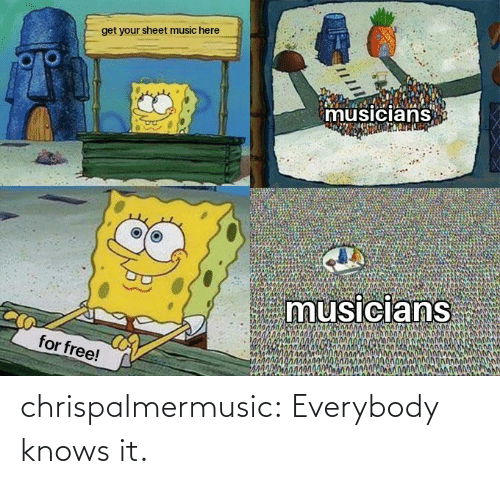 Everybody: chrispalmermusic:  Everybody knows it.