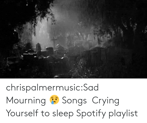 Sleep: chrispalmermusic:Sad Mourning 😢 Songs  Crying Yourself to sleep Spotify playlist