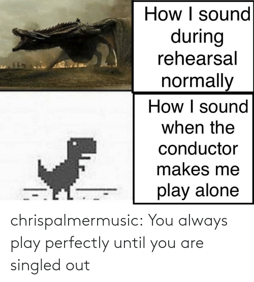 Until You: chrispalmermusic:  You always play perfectly until you are singled out