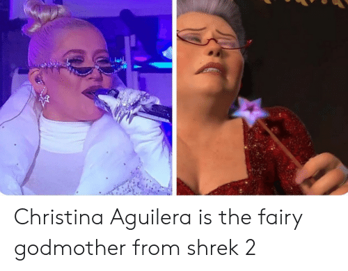aguilera: Christina Aguilera is the fairy godmother from shrek 2