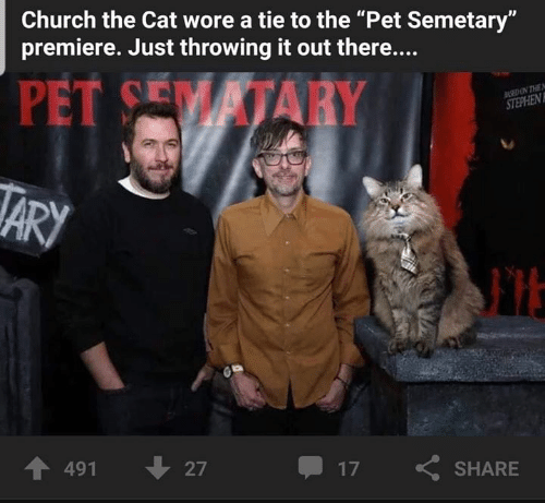 "Church, Memes, and 🤖: Church the Cat wore a tie to the ""Pet Semetary""  premiere. Just throwing it out there....  PET CEM İTARY  个491  27  17  SHARE"