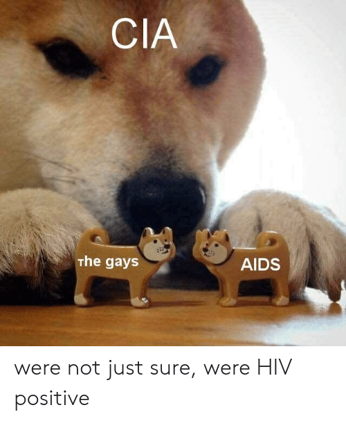 Hiv Positive: CIA  The gays  AIDS were not just sure, were HIV positive