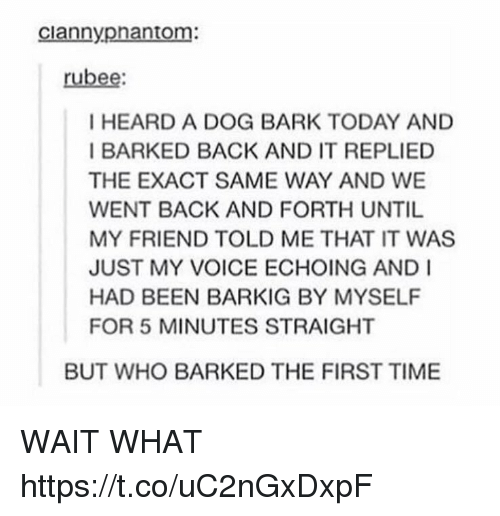 exacting: ciannyphantom:  rubee  I HEARD A DOG BARK TODAY AND  I BARKED BACK AND IT REPLIED  THE EXACT SAME WAY AND WE  WENT BACK AND FORTH UNTIL  MY FRIEND TOLD ME THAT IT WAS  JUST MY VOICE ECHOING AND I  HAD BEEN BARKIG BY MYSELF  FOR 5 MINUTES STRAIGHT  BUT WHO BARKED THE FIRST TIME WAIT WHAT https://t.co/uC2nGxDxpF