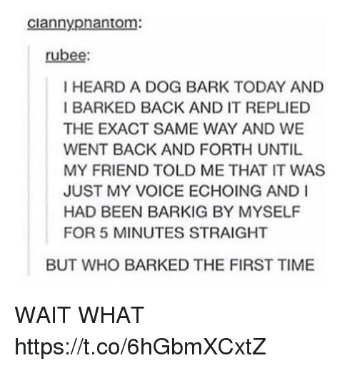 exacting: ciannypnantom:  rubee  I HEARD A DOG BARK TODAY AND  I BARKED BACK AND IT REPLIED  THE EXACT SAME WAY AND WE  WENT BACK AND FORTH UNTIL  MY FRIEND TOLD ME THAT IT WAS  JUST MY VOICE ECHOING AND I  HAD BEEN BARKIG BY MYSELF  FOR 5 MINUTES STRAIGHT  BUT WHO BARKED THE FIRST TIME WAIT WHAT https://t.co/6hGbmXCxtZ