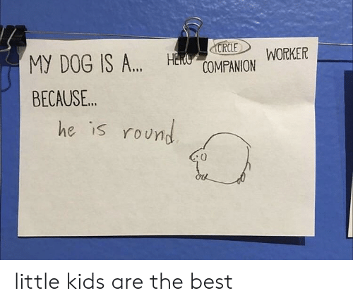 Best, Kids, and Dog: CIRCLE  HECUOMPANION  WORKER  MY DOG IS A..  BECAUSE..  he is round little kids are the best