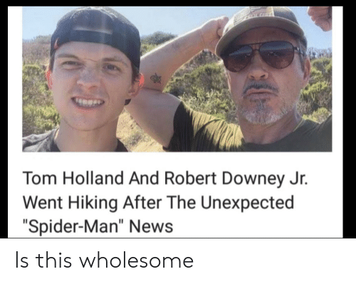 """News, Robert Downey Jr., and Spider: CLALGHT  Tom Holland And Robert Downey Jr.  Went Hiking After The Unexpected  """"Spider-Man"""" News Is this wholesome"""