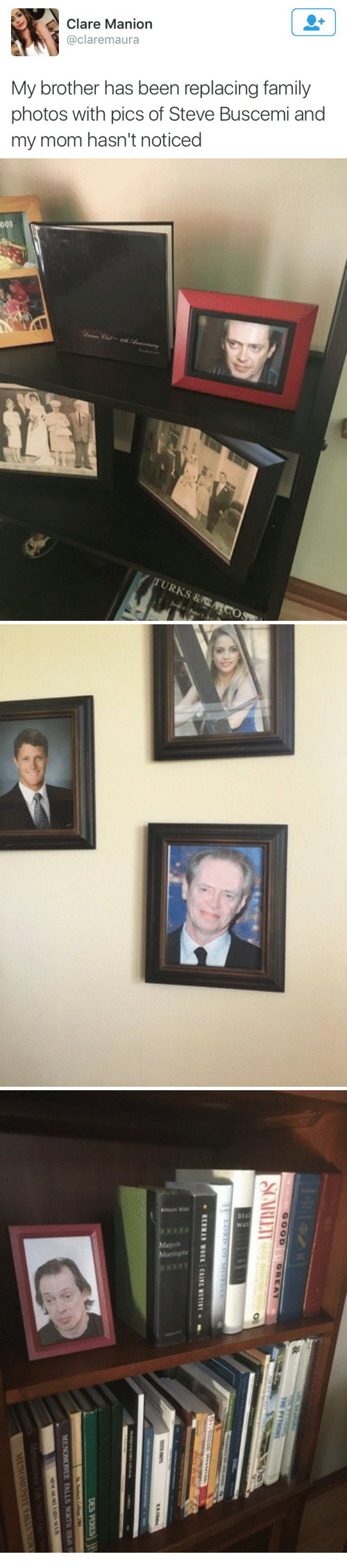 Family, Steve Buscemi, and Mom: Clare Manion  @claremaura  My brother has been replacing family  photos with pics of Steve Buscemi and  my mom hasn't noticed   003