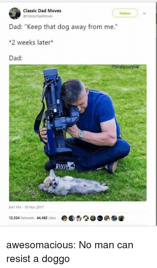 "Dad, Tumblr, and Blog: Classic Dad Moves  ollon  ClassicDad Moves  Dad: ""Keep that dog away from me.""  *2 weeks later*  Dad:  @popyourpup  41 PM- 10 Nov 2017  12,324 Retweets 44,462 Likes  ●●,2●●俨 awesomacious:  No man can resist a doggo"