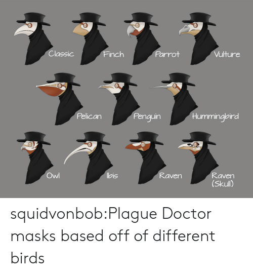 Skull: Classic  Parrot  Vulture  Finch  Pelican  Penguin  Hummingbird  ヌ331  Owl  bis  Raven  Raven  (Skull) squidvonbob:Plague Doctor masks based off of different birds