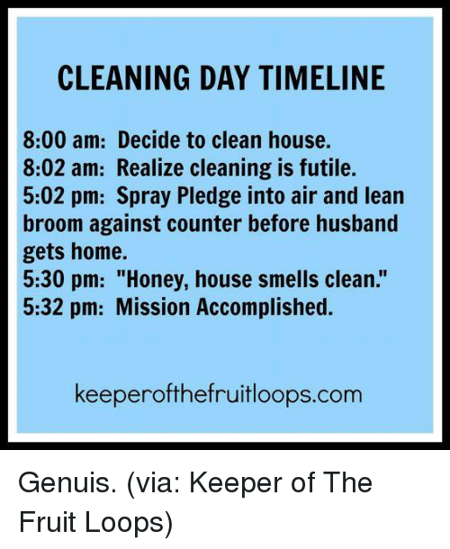 """fruit loops: CLEANING DAY TIMELINE  8:00 am: Decide to clean house.  8:02 am: Realize cleaning is futile.  5:02 pm: Spray Pledge into air and lean  broom against counter before husband  gets home.  5:30 pm: """"Honey, house smells clean.""""  5:32 pm: Mission Accomplished.  keeperofthefruitloops.com Genuis. (via: Keeper of The Fruit Loops)"""