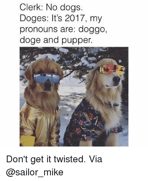 Doge, Dogs, and Memes: Clerk: No dogs.  Doges: It's 2017, my  pronouns are: doggo,  doge and pupper. Don't get it twisted. Via @sailor_mike