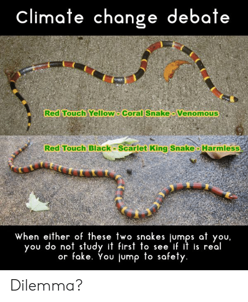 Fake, Funny, and Black: climate change debate  Red Touch Yellow Coral Snake Venomous  Red Touch Black Scarlet King Snake-Harmless  when either of these two snakes jumps at you,  you do not study it first to see if it is real  or fake. You jump to safety. Dilemma?