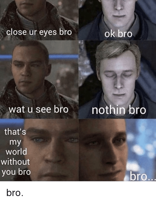 Memes, Wat, and World: close ur eyes bro  ok bro  wat u see bro  nothin bro  that's  my  world  without  you bro  bro bro.