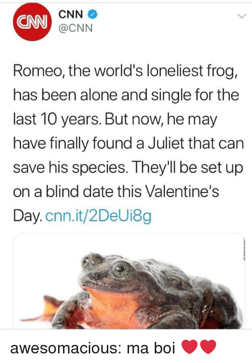 Being Alone, cnn.com, and Tumblr: CNN  CNN  @CNN  Romeo, the world's loneliest frog,  has been alone and single for the  last 10 years. But now, he may  have finally found a Juliet that can  save his species. They'll be set up  on a blind date this Valentine's  Day.cnn.it/2DeUi8g awesomacious:  ma boi ❤️❤️