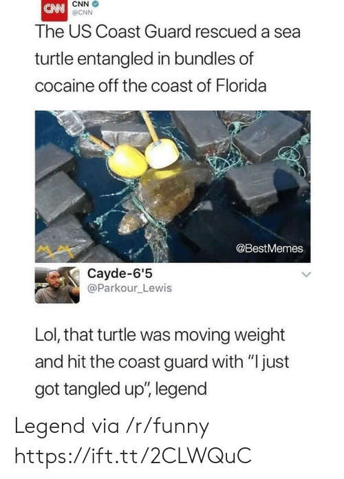 "Coast Guard: CNN  @CNN  The US Coast Guard rescued a sea  turtle entangled in bundles of  cocaine off the coast of Florida  @BestMemes  Cayde-6'5  @Parkour_Lewis  Lol, that turtle was moving weight  and hit the coast guard with ""just  got tangled up', legend Legend via /r/funny https://ift.tt/2CLWQuC"
