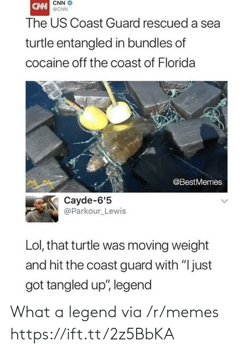 "Tangled: CNN  @CNN  The US Coast Guard rescued a sea  turtle entangled in bundles of  cocaine off the coast of Florida  @BestMemes  Cayde-6'5  @Parkour_Lewis  Lol, that turtle was moving weight  and hit the coast guard with ""just  got tangled up', legend What a legend via /r/memes https://ift.tt/2z5BbKA"
