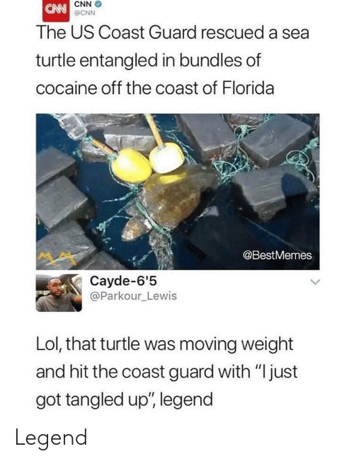 "Tangled: CNN  @CNN  The US Coast Guard rescued a sea  turtle entangled in bundles of  cocaine off the coast of Florida  @BestMemes  Cayde-6'5  @Parkour_Lewis  Lol, that turtle was moving weight  and hit the coast guard with ""just  got tangled up', legend Legend"