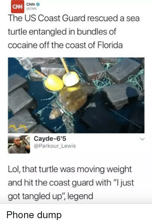 "Tangled: CNN  OCNN  The US Coast Guard rescued a sea  turtle entangled in bundles of  cocaine off the coast of Florida  Cayde-6'5  @Parkour_Lewis  Lol, that turtle was moving weight  and hit the coast guard with ""ljust  got tangled up, legend Phone dump"