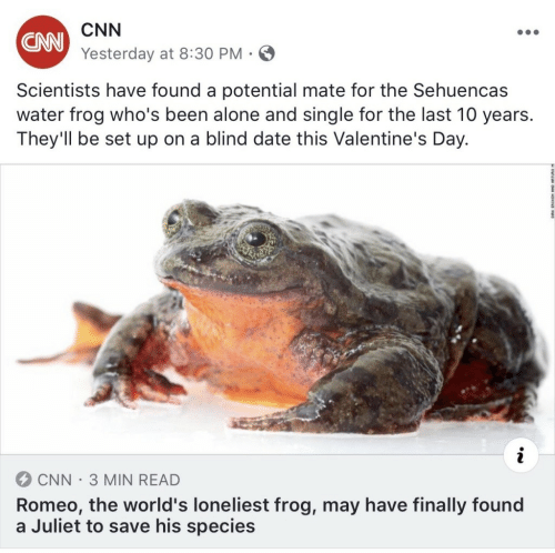 Being Alone, cnn.com, and Valentine's Day: CNN  Yesterday at 8:30 PM  CNN  Scientists have found a potential mate for the Sehuencas  water frog who's been alone and single for the last 10 years.  They'll be set up on a blind date this Valentine's Day.  CNN-3 MIN READ  Romeo, the world's loneliest frog, may have finally found  a Juliet to save his species
