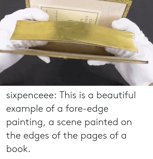 Beautiful, Tumblr, and Blog: Co  UNI  LI  AUDYARD sixpenceee:  This is a beautiful example of a fore-edge painting, a scene painted on the edges of the pages of a book.