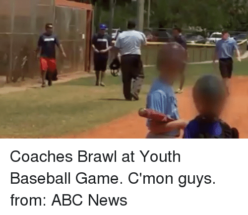 Brawle: Coaches Brawl at Youth Baseball Game. C'mon guys. from: ABC News