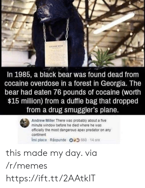Overdose: COCAINE EA  In 1985, a black bear was found dead from  cocaine overdose in a forest in Georgia. The  bear had eaten 76 pounds of cocaine (worth  $15 million) from a duffle bag that dropped  from a drug smuggler's plane.  Andrew Miller There was probably about a five  minute window before he died where he was  officially the most dangerous apex predator on any  continent  imi place . Răspunde 680 14 ore this made my day. via /r/memes https://ift.tt/2AAtkIT