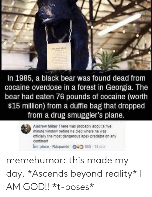Overdose: COCAINE EA  In 1985, a black bear was found dead from  cocaine overdose in a forest in Georgia. The  bear had eaten 76 pounds of cocaine (worth  $15 million) from a duffle bag that dropped  from a drug smuggler's plane.  Andrew Miller There was probably about a five  minute window before he died where he was  officially the most dangerous apex predator on any  continent  imi place . Răspunde 680 14 ore memehumor:  this made my day.  *Ascends beyond reality* I AM GOD!! *t-poses*